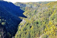 Germany - Harz Mountains - Thale - the enchanting Bodetal canyon walk