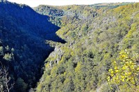 Germany - Harz - Bodetal canyon seen from above