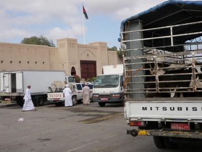 Escaping from the Nizwa Souk