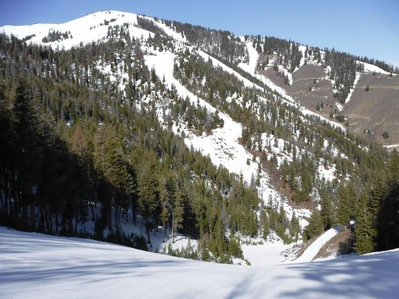 Baldy ski hill