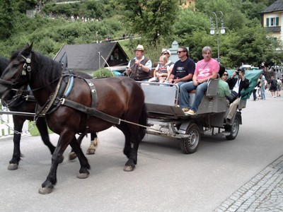SCHLOSS  NEUSCHWANSTEIN   GERMANY.  One  mode  of  transport  to  castle.