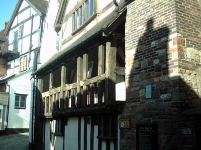 SHREWSBURY,  ENGLAND.     Fish  street.