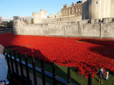 TOWER OF  LONDON. -- The British  Legion a charity, each year sell poppies in November. People wear with  pride..--  This year 2014 something different ,ceramic  poppies were sold and displayed in the  Moat of the Tower of  London.