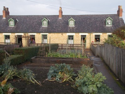 BEAMISM MUSEUM  Francis street miners cottages with vegatable gardens.