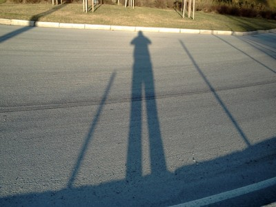 LONG SHADOW IN THE NORTH