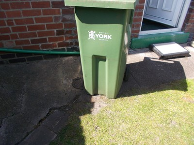 Green wheely bin for garden rubbish.