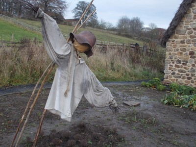 BEAMISH MUSEUM. Scarecrow in Quilters cottage garden.
