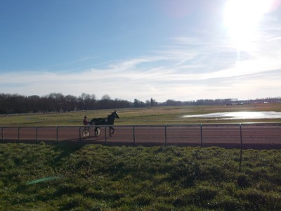 CAEN FRANCE.  Practicing for Harness Racing at Hippodrome De La Prairie Caen.--Harness Racing is a horse race at a specific gait or trot,pulling a two wheeled cart with jockey. The cart is called a Sulky.ot