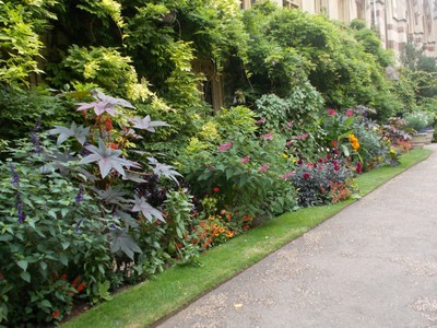 OXFORD  UK    Balliol garden
