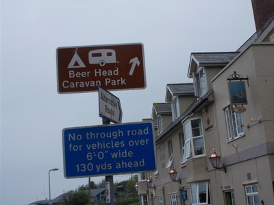 I  like a  head  on  my  beer.