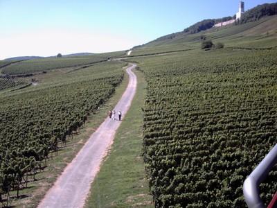 RUDESHEIM  GERMANY.     Gliding over the vineyards.