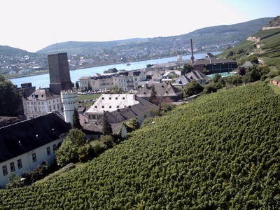 RUDESHEIM  GERMANY.              From the Chairlift.