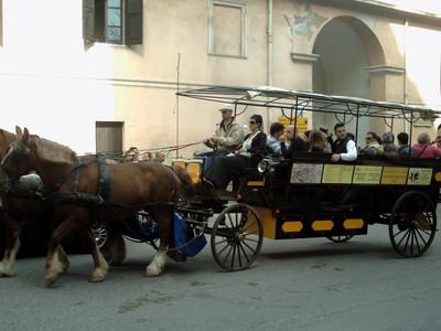 CAGLIARI. -- TOURIST HORSE AND CARRIAGE.