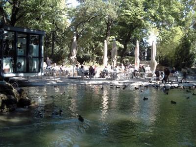 AVIGNON  FRANCE   ---Rocher Des  Doms gardens  next  to  cathedral.