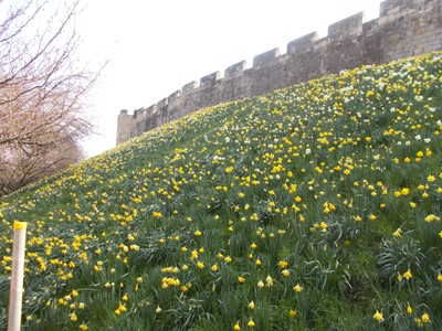 CITY  WALL IN  SPRINGTIME,--Over the  wall , inside the City the  first  station was built. Behind the  camera is todays  station.
