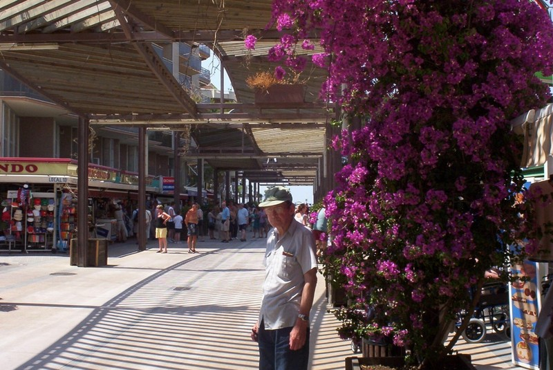 SALOU  SPAIN.    Covered  street, for  shade.