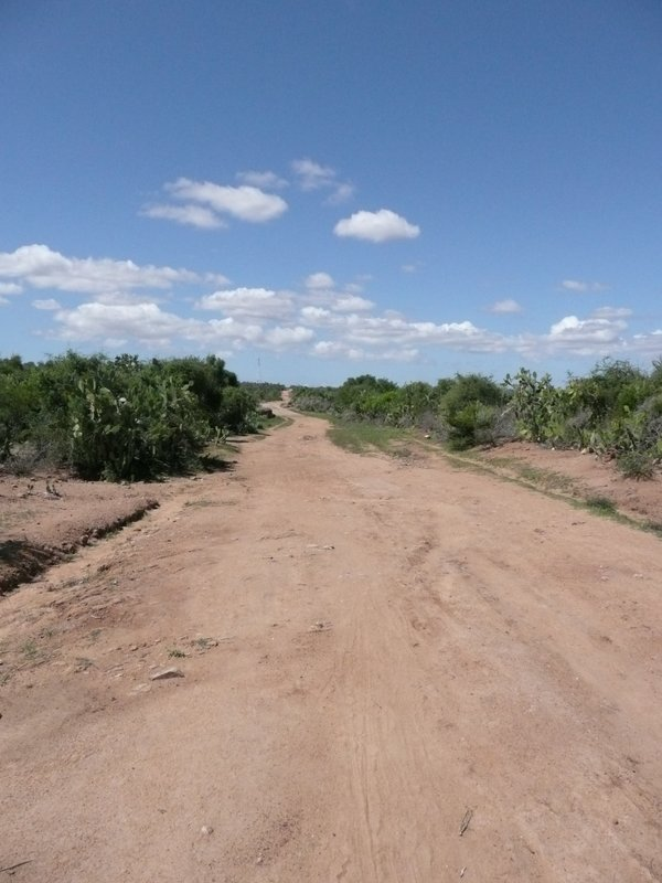 Road to Antanimora