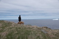 Spring in Pouch Cove