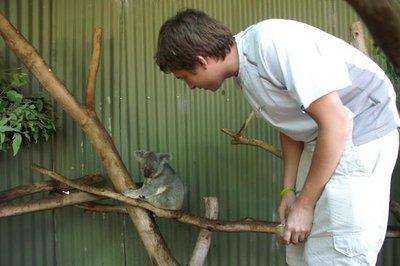 australia_..ict0138.jpg