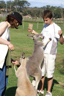 australia_..ict0165.jpg