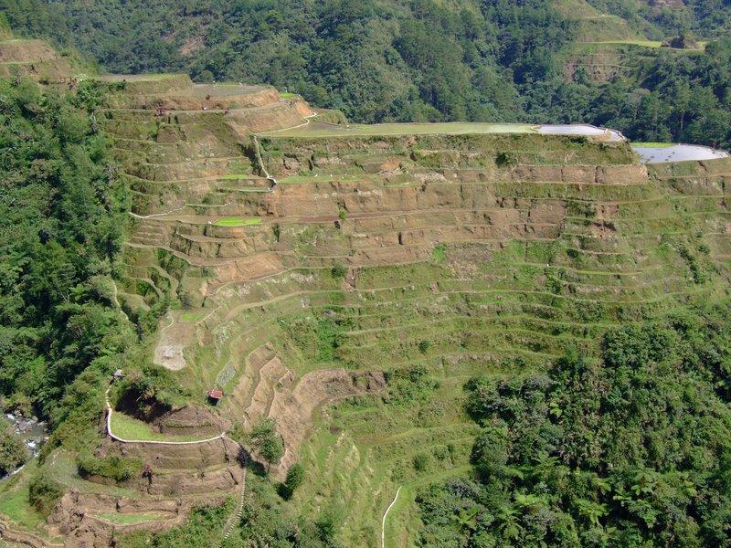 Rice Terraces Batad