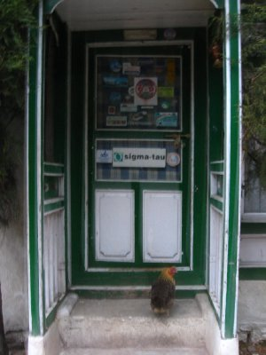 Jorsale guesthouse door with rooster