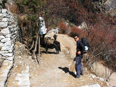Everest_Ba..rek_061.jpg