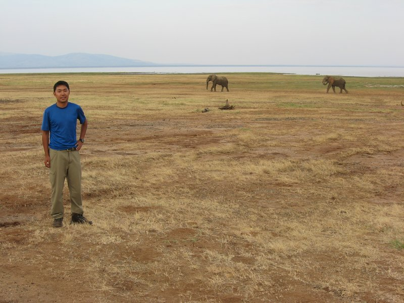 Me and the elephants of Manyara