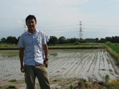 rice_paddy.jpg