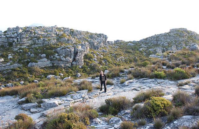 Table Mountain: Hiking