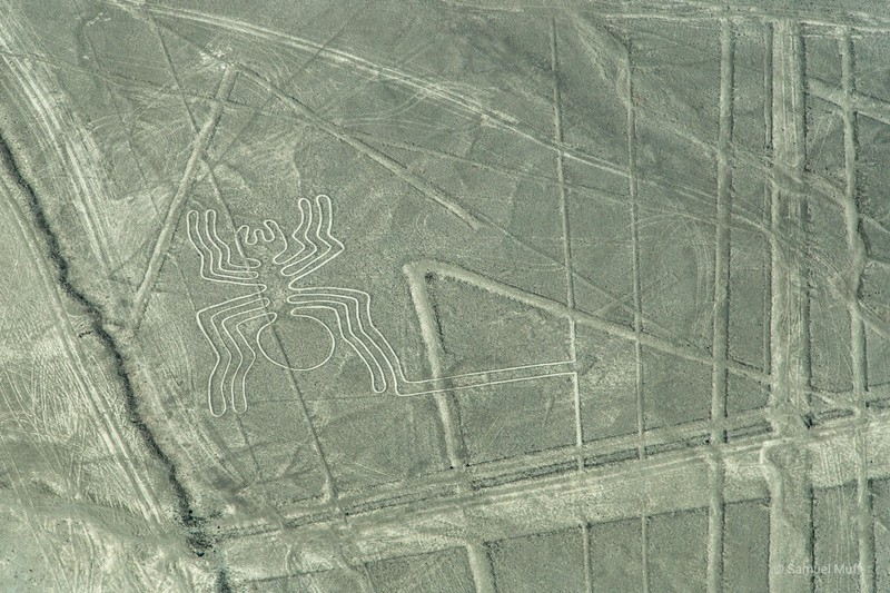 'Spider' figure of the Nazca lines