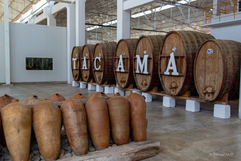 Barrels at the Tacama winery in Ica