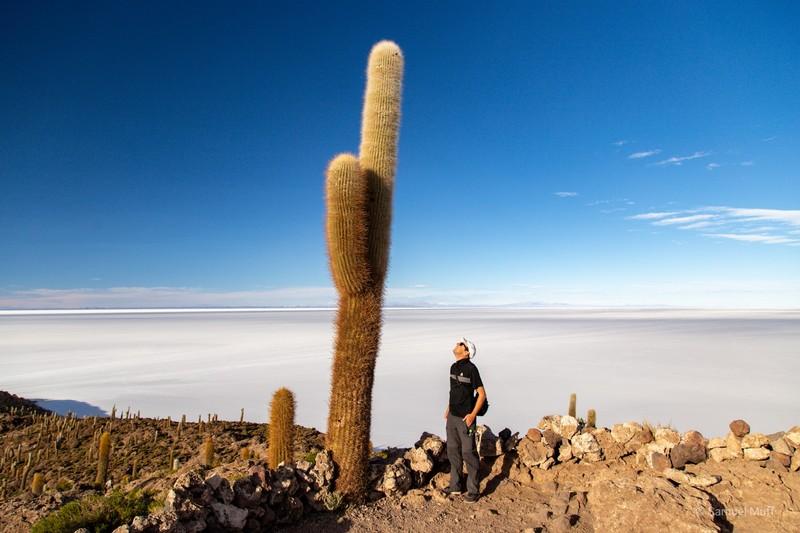 Sam looking at a giant cactus on Incahuasi Island