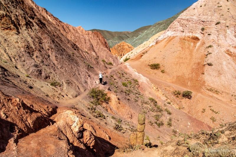 Marta hiking near Purmamarca