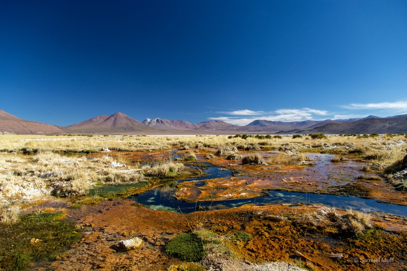 Landscape of the Bolivian altiplano