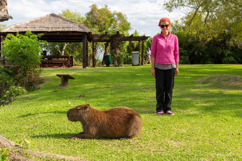 Marta next to a capybara