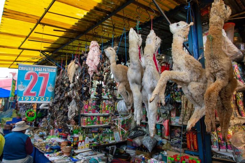 Baby llamas and llama fetuses at the El Alto witches market