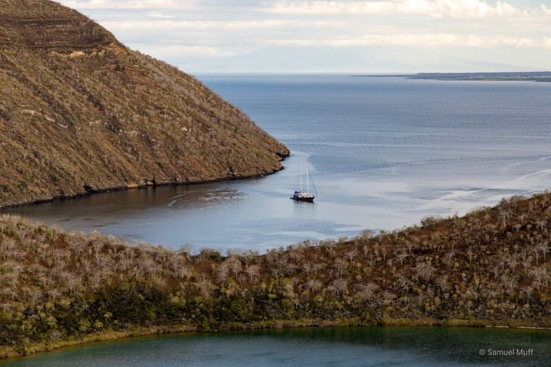 The Beagle anchoring in Tagus Cove, Isabela Island