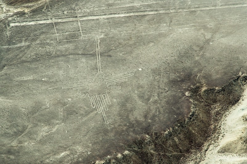 'Hummingbird' figure of the Nazca Lines