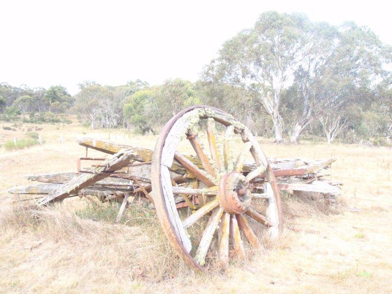 Coleman Hut Cart
