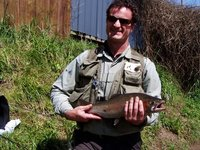 3.5 Pound Rainbow Trout