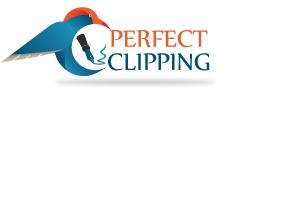 perfectclipping