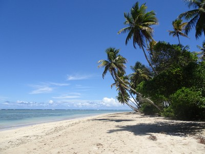 Boipeba island - beautiful, relaxed, paradise!