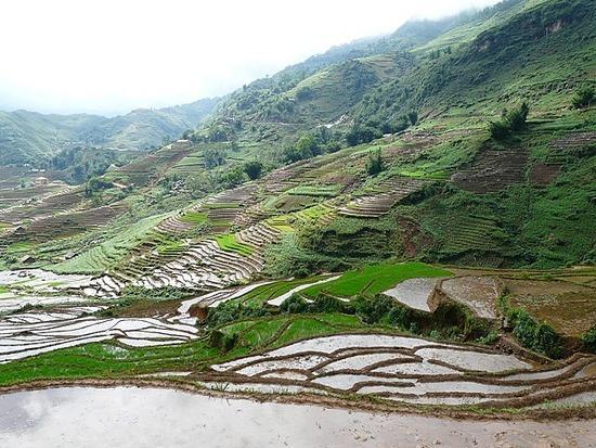 Sapa Valley 2