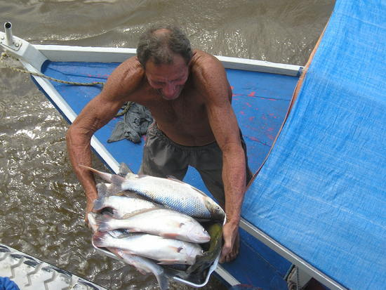 Amazon Boat - Anyone for fish? 2
