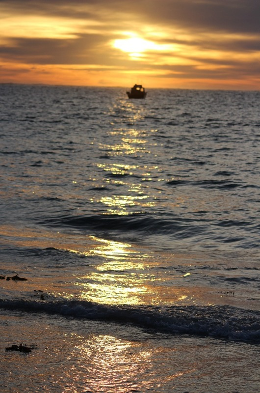 Hamelin Bay - Sun setting