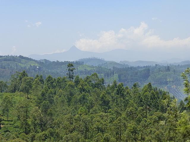 Train - view of Adam's Peak