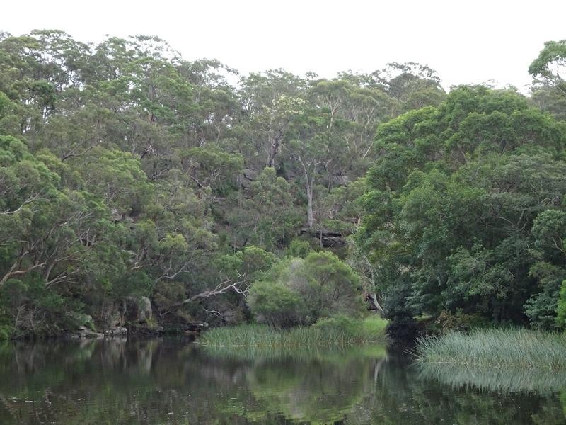 Royal National Park - Audley