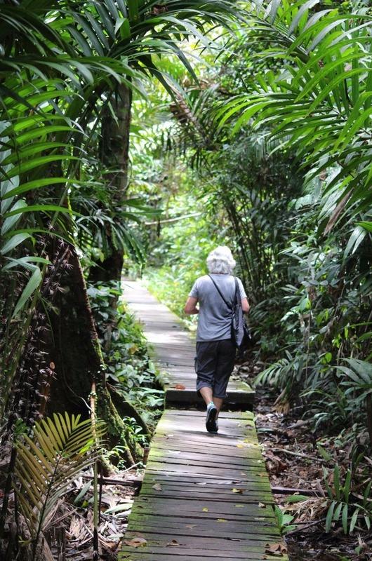 Track 2 to Teluk Delima
