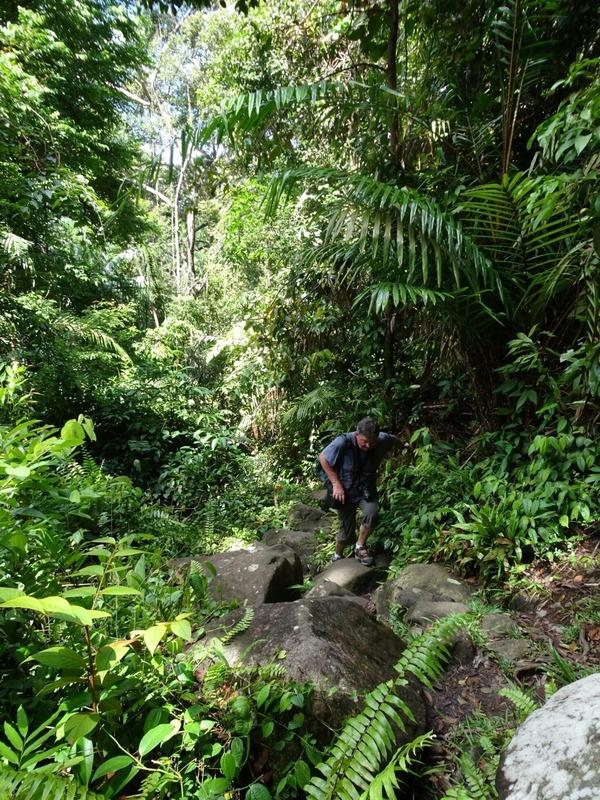 Track 3 to Teluk Paku 2